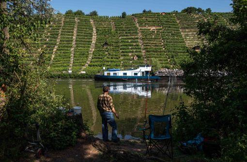 Gesundheitsamt rät vom Baden in Flüssen weiter ab