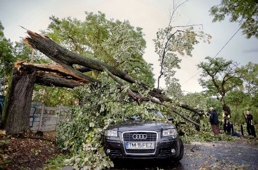 Acht Menschen sterben bei schweren Unwettern