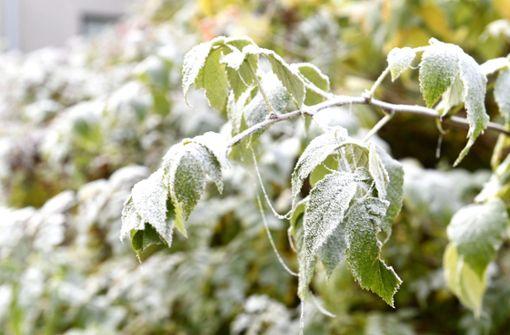 Wetter bleibt wechselhaft –  Freitag Schnee erwartet