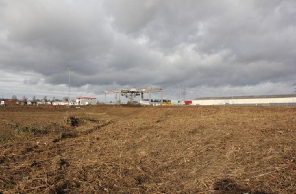 Am Containerbahnhof in Kornwestheim entsteht ein neues Industriegebiet. Foto: