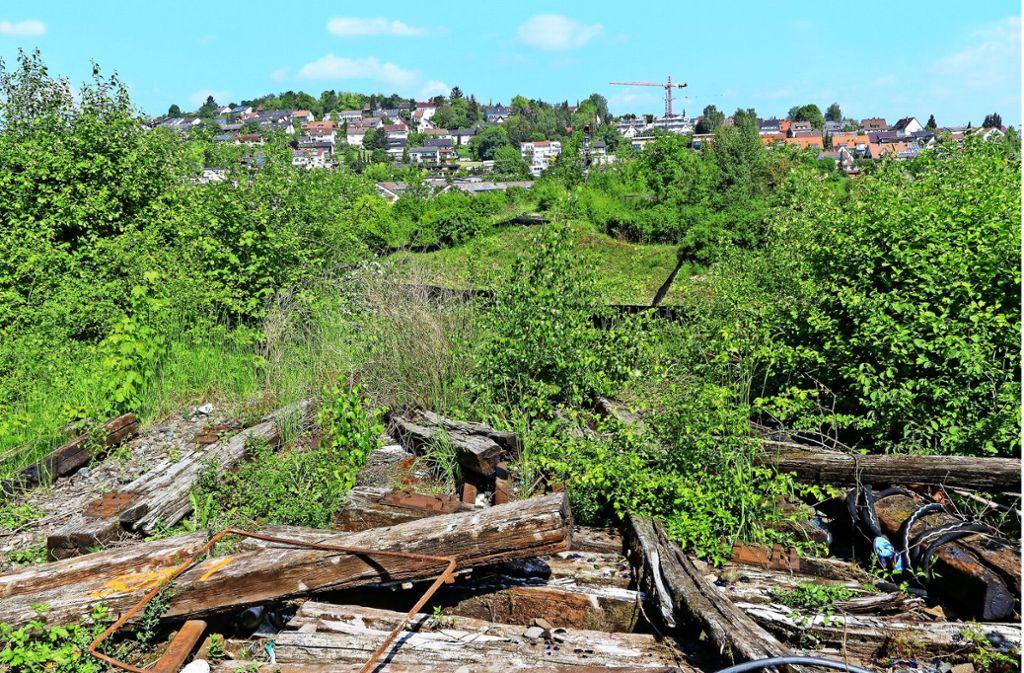 Am Malersbuckel enden die Schienen der vormaligen Schwarzwaldbahn, denn hier verläuft die Südumfahrung. Hier muss für die Hesse-Bahn eine Brücke gebaut werden. Foto: factum/Granville
