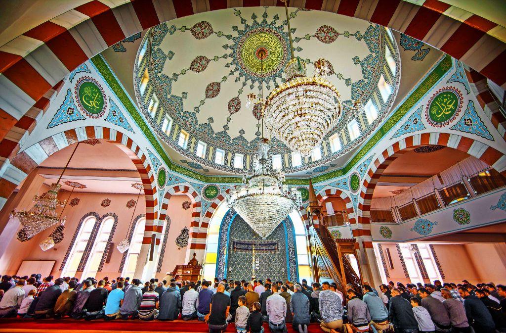 1,6 Tonnen wiegt der riesige Kronleuchter unter der Kuppel der Fatih-Moschee. Zwei der Leuchter an der Seite sind Geschenke der katholischen und evangelischen Gemeinde, als Zeichen der Freundschaft. Foto: Gottfried Stoppel