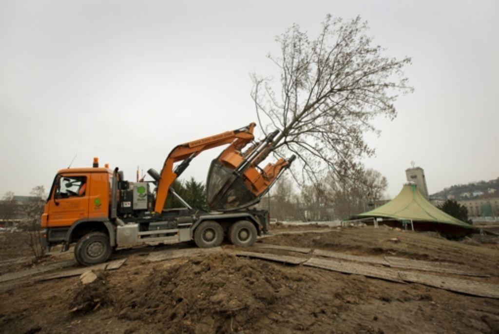 Bäume im Mittleren Schlossgarten werden umgepflanzt. Foto: Michael Steinert