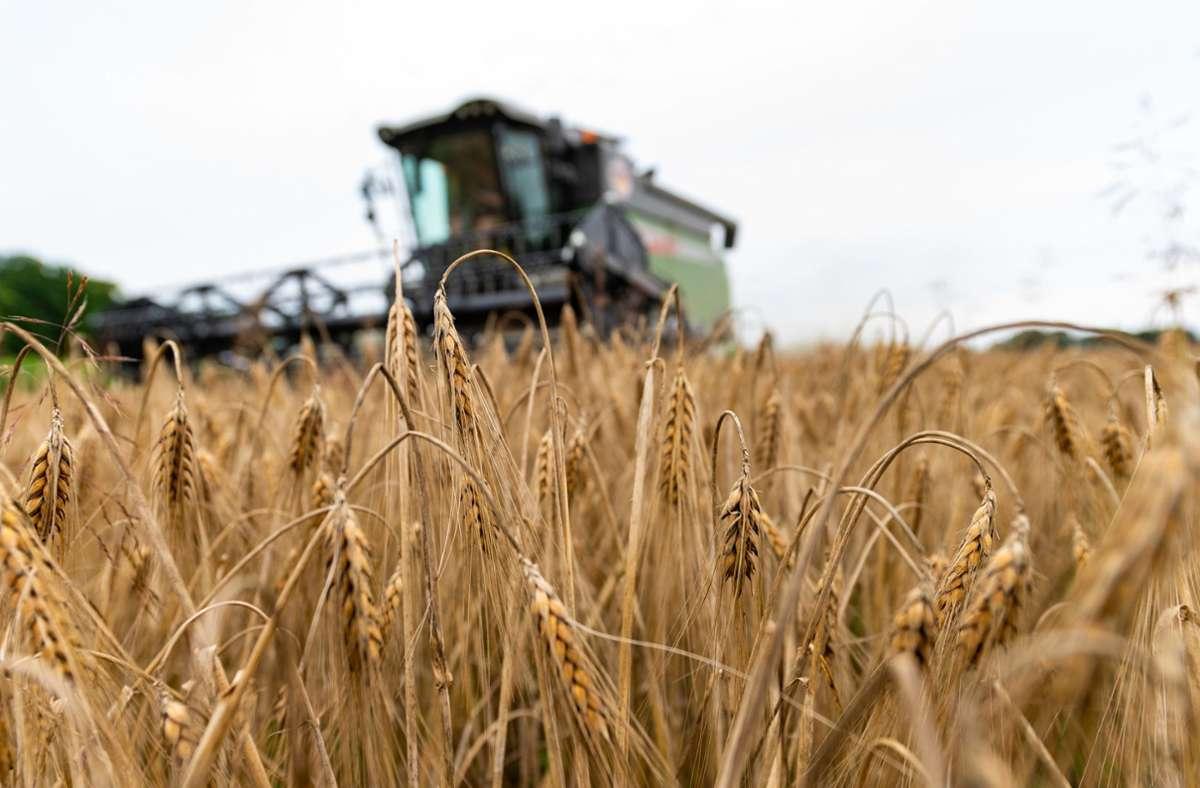 Die Landwirte in Europa hängen stark an den Subventionen der EU. Foto: dpa/Philipp Schulze