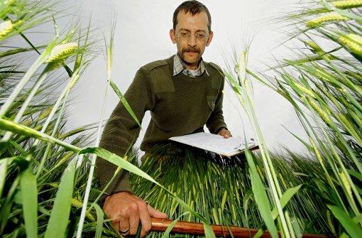 Getreide wird aufs Korn genommen
