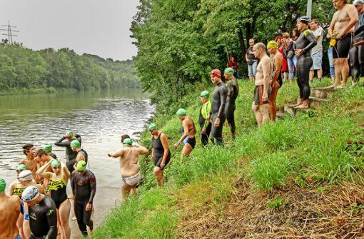 Neckarschwimmer ärgern sich über Behörde