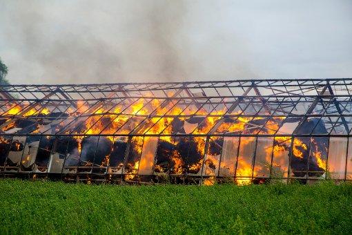 1000 Strohballen stehen in Flammen