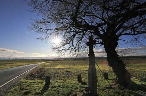 Was prophezeien die Bauernregeln für den März?