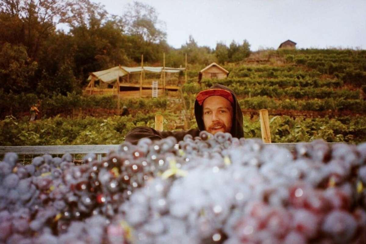 Axel Aßfalg auf Mission: Der Wein-Experte will seinen Weinberg teilen und hat spannende Infos zu einer neuen Vinothek mitten in Stuttgart. Foto: Orange Originals