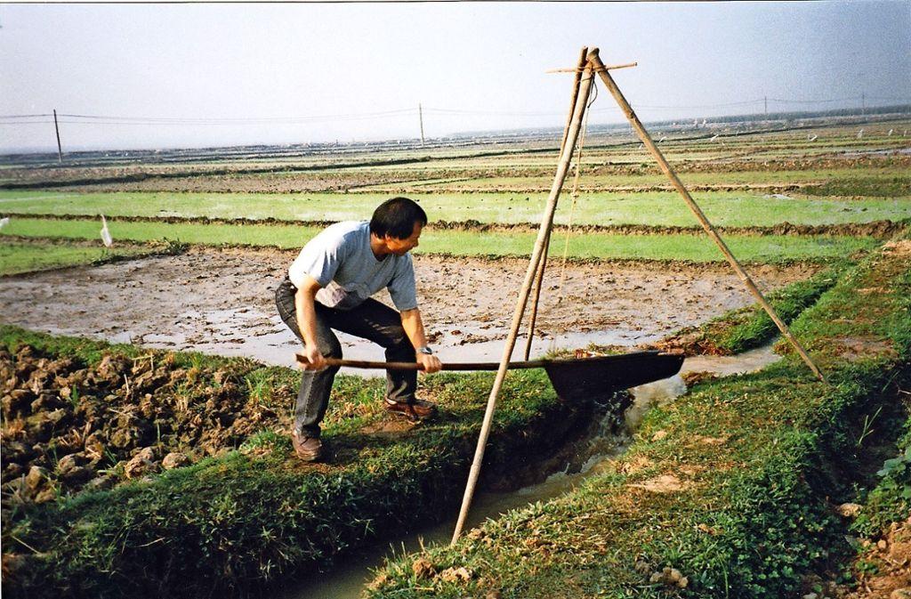 Duyen Lai Dinh hat  sich bei einer Vietnam-Reise selbst als Reisbauer versucht. Foto: privat