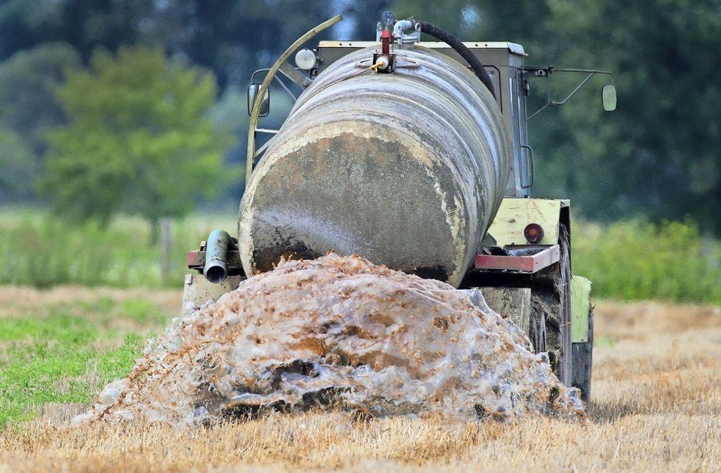 Das Ausbringen von zuviel Gülle gilt als Ursache für hohe Nitratwerte. Foto: dpa/Patrick Pleul