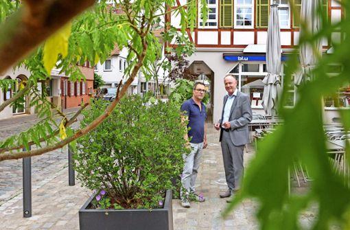 Beim Altstadt-Garten blüht der  Marktplatz auf