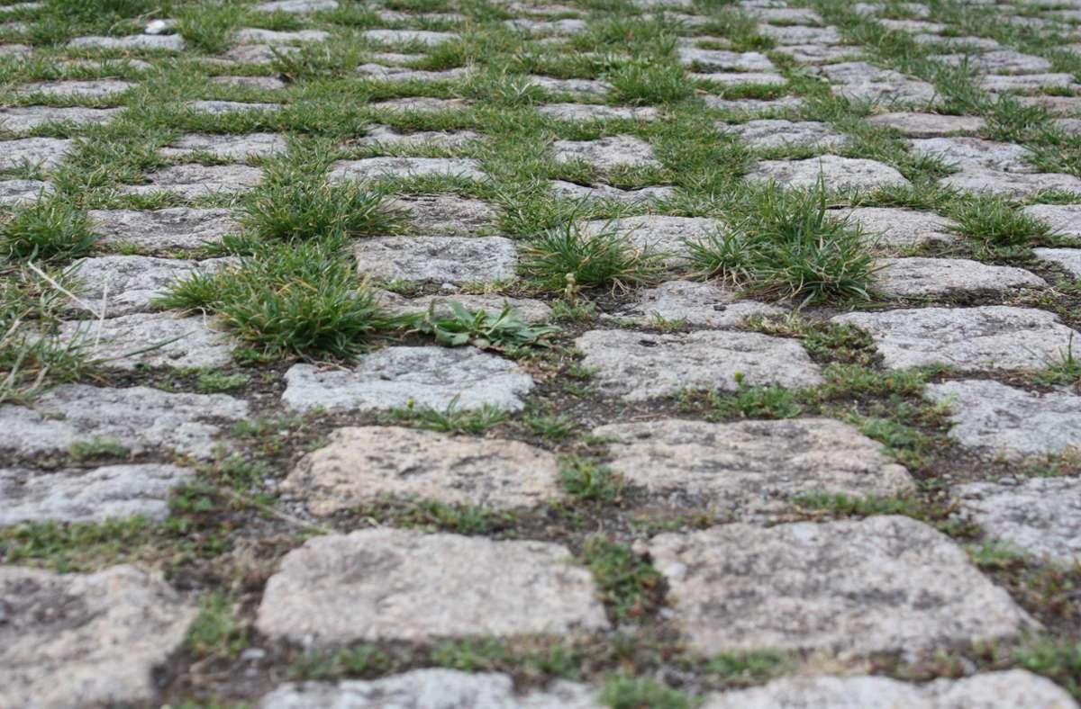 Um diese Pflastersteine in Degerloch geht es. Bleiben sie? Foto: Christoph Kutzer