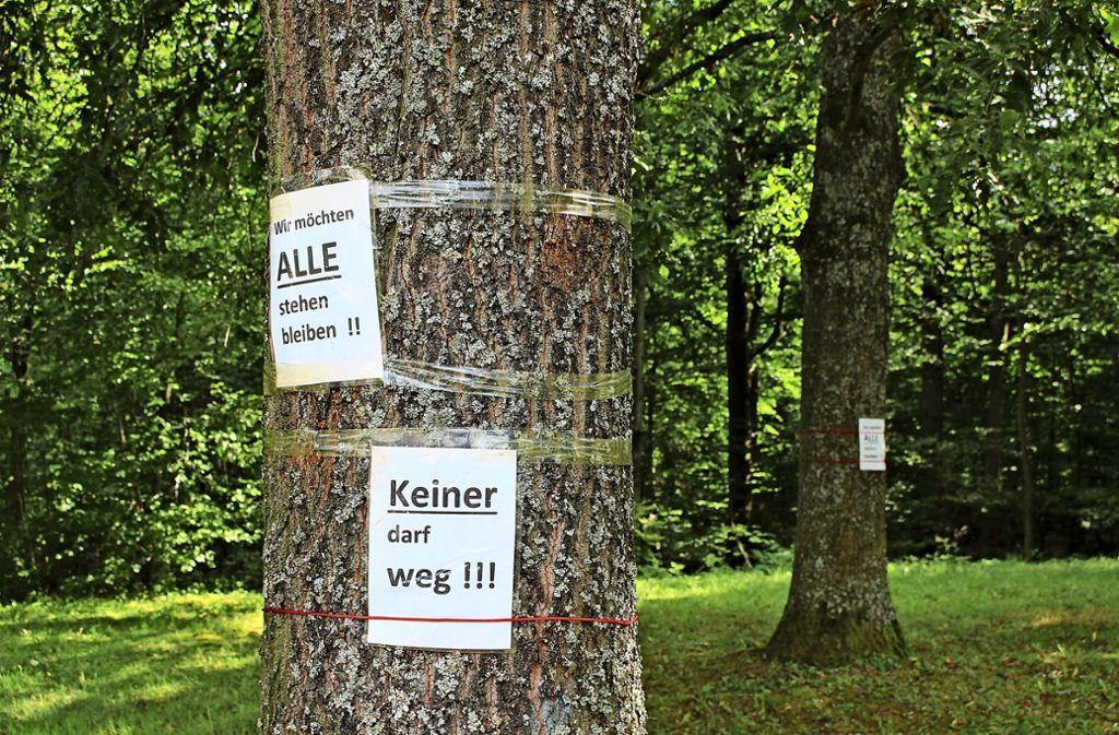 Für den geplanten Sendemast müssten einige Bäume weichen. Die Anwohner wollen, das nicht. Foto: