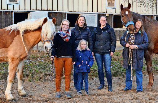 Pferdeparadies am Rand des Synergieparks