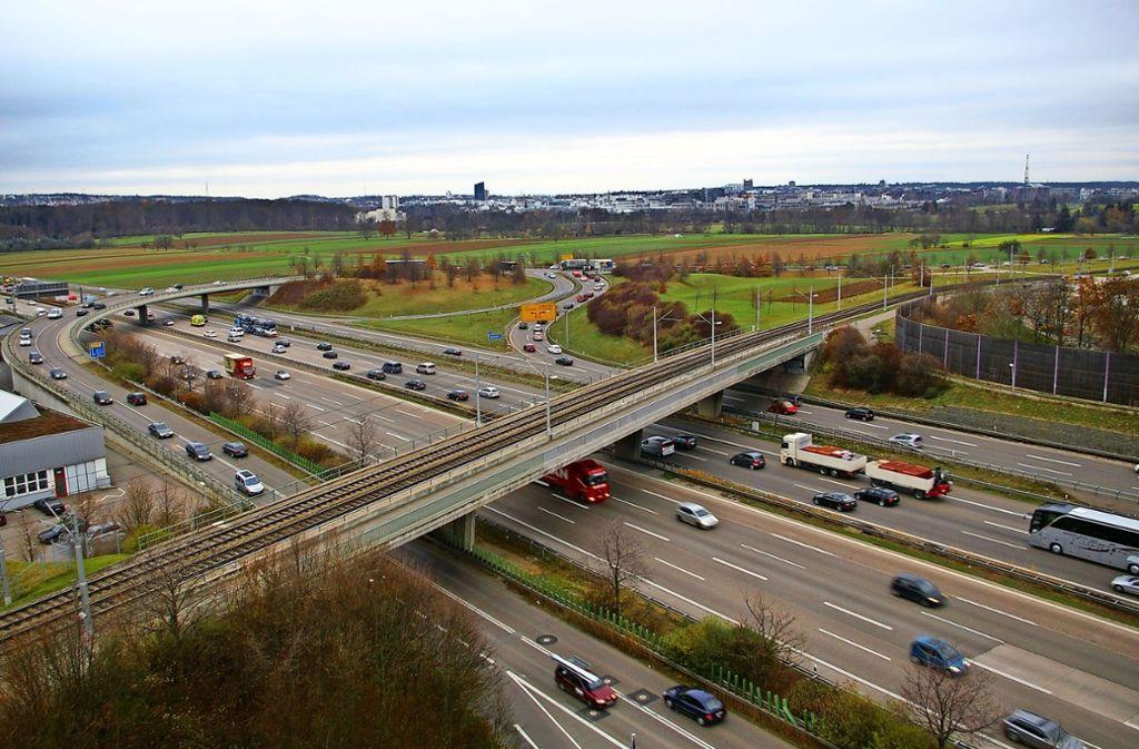 Die Tiere sollen künftig östlich der Nord-Süd-Straße, also in Richtung Fasanenhof (im Bild rechts) leben. Foto: Alexandra Kratz