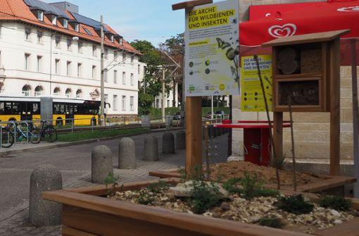 Neue  Wildbienen-Arche am Bahnhof