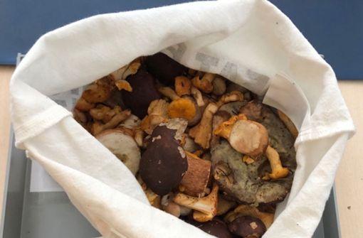 Pilze an Grenze beschlagnahmt – Seniorenheim im Glück
