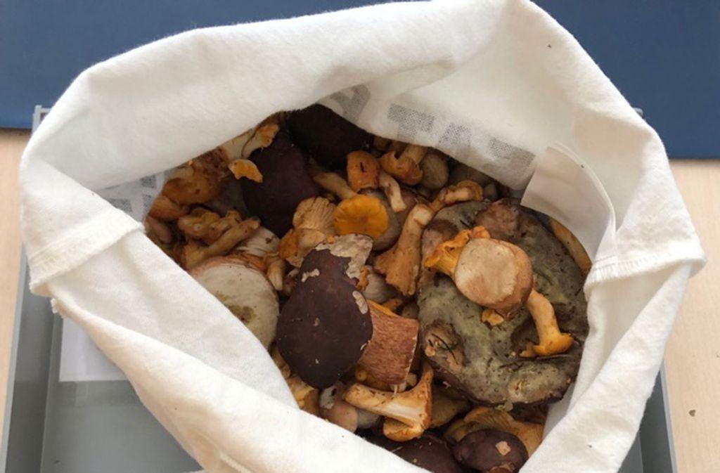 Die Zöllner beschlagnahmten mehr als zwei Kilogramm Pilze. Foto: Hauptzollamt