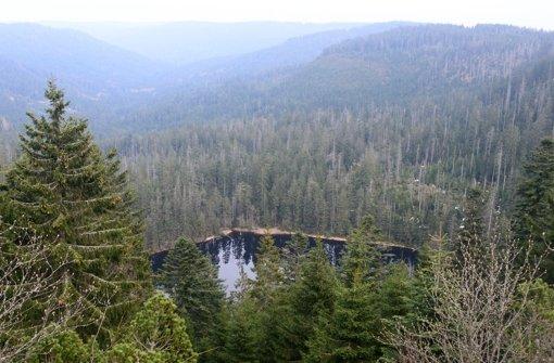Bürgernationalpark steht in Kritik
