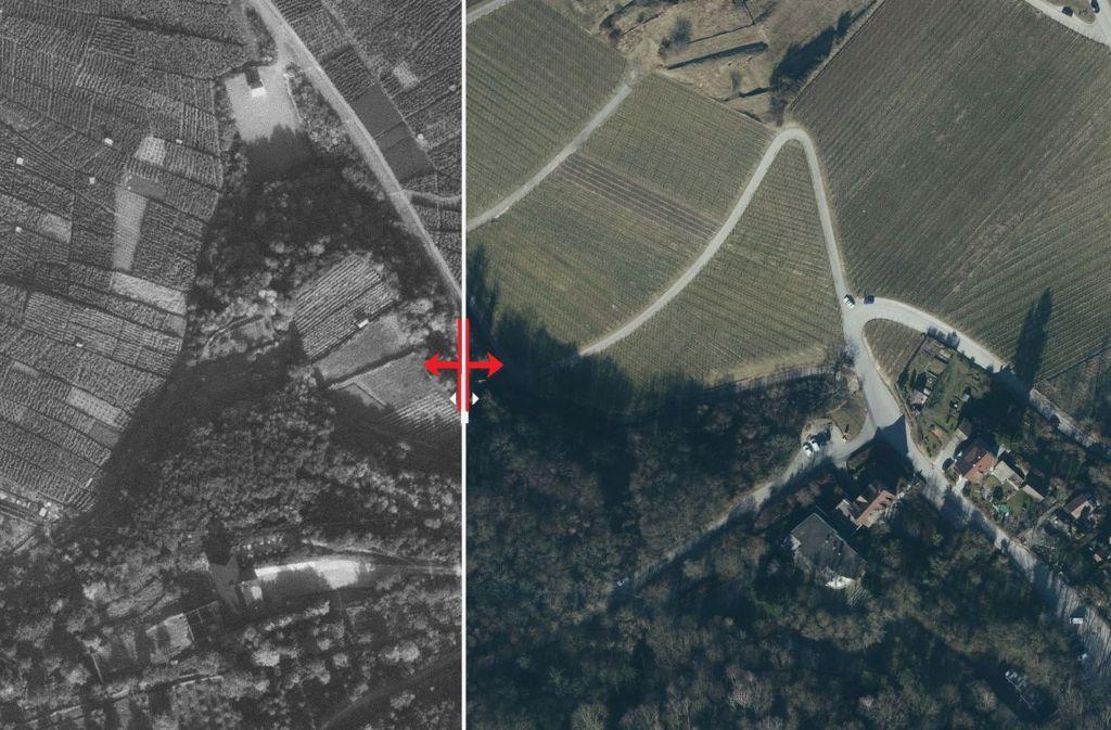 Handtuchgroße Grundstücke, kaum Wirtschaftswege und  Zwang zur Handarbeit: Der Kappelberg vor der Flurbereinigung Foto: