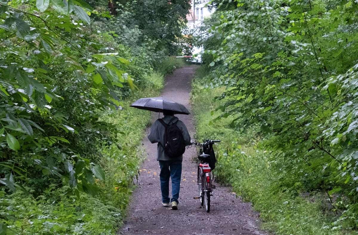 Der August beginnt in Baden-Württemberg ziemlich nass. (Archivbild) Foto: dpa/Bernd Weissbrod