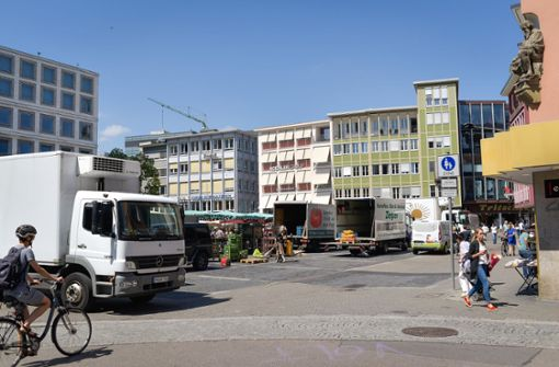 Heimatbund für Bäume auf dem Marktplatz