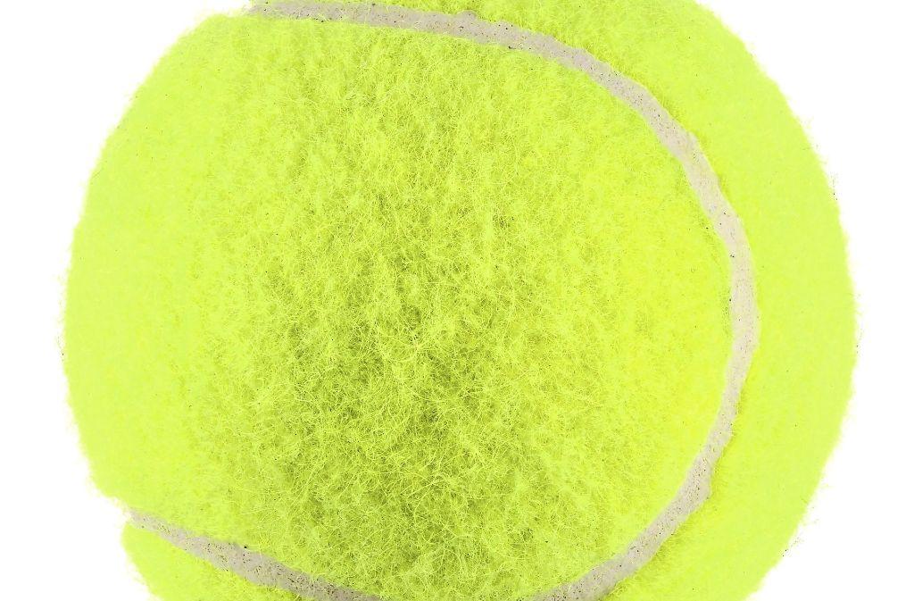 Der Ditzinger Tennisclub wird finanziell gefördert. Foto: