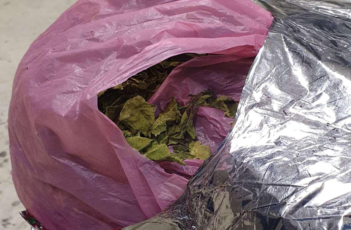 Üblicherweise werden die frischen Blätter des Kathstrauches konsumiert, bei der vom Zoll gestoppten Sendung handelte es sich um getrocknete Ware. Foto: