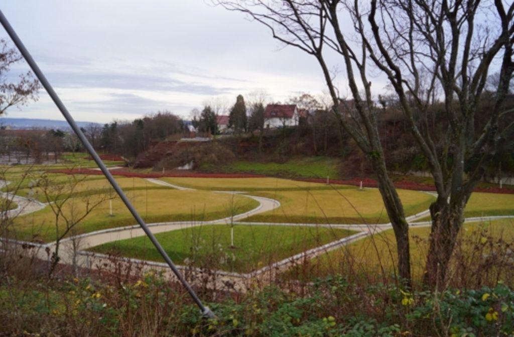 Die hohen Rasenpolster im Killesbergpark sind modern, gefallen aber nicht jedem. Foto: Fritzsche