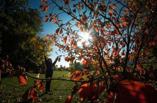 Zehn Tipps für die Herbstferien
