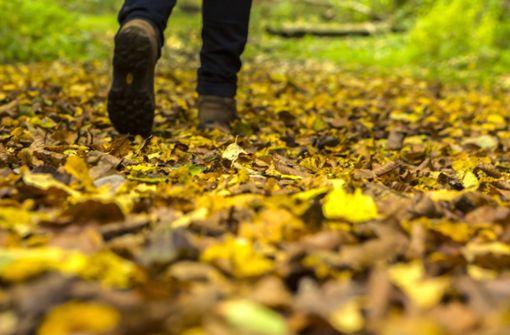 Wann beginnt der Herbst 2021?
