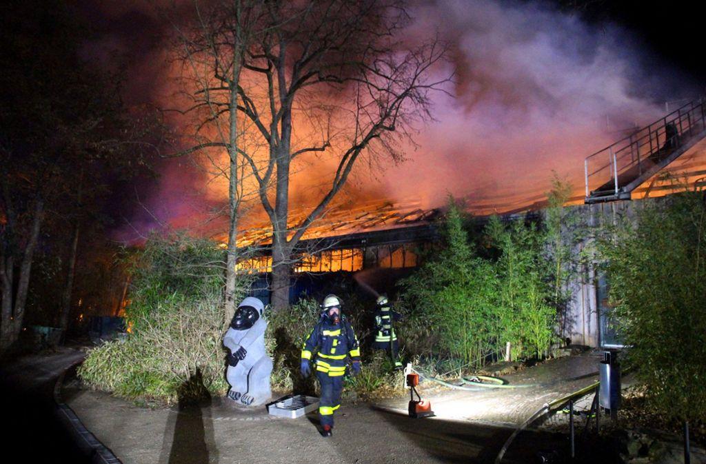 Himmelslaternen haben den Brand im Krefelder Zoo ausgelöst, bei dem dutzende Tiere starben. Foto: AFP/Alexander Forstreuter