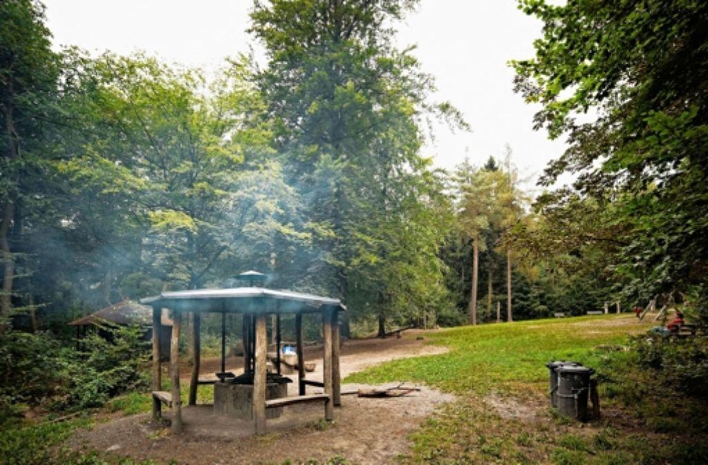 Unter der Woche geht es am Grillplatz im Bürgerwald entspannt zu. Foto: Heinz Heiss
