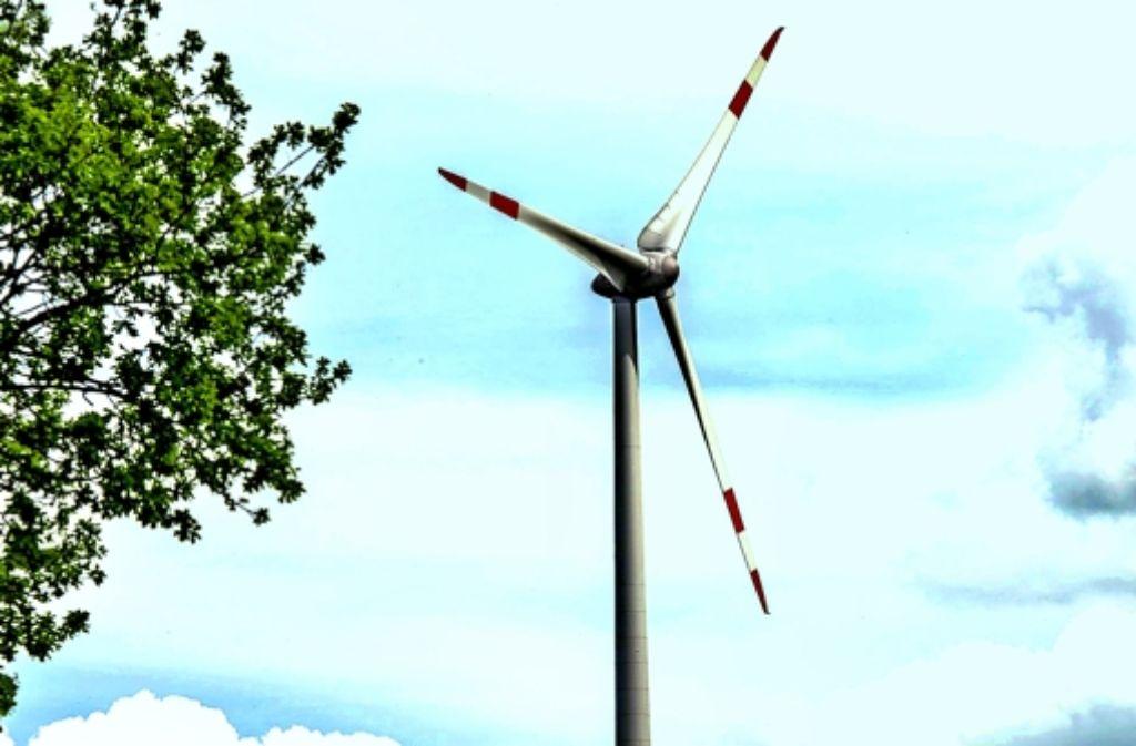 Die Stadtwerke beabsichtigen im Tauschwald  zwei  Windräder Foto: dpa