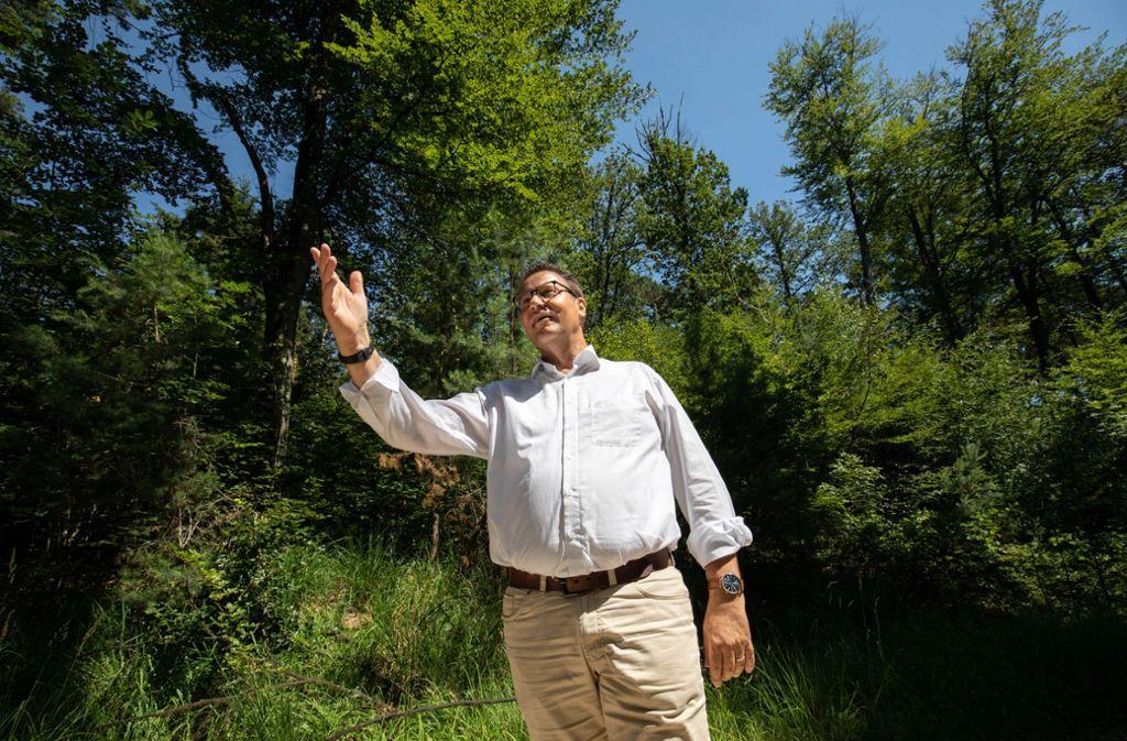 Im Sommer hat sich Minister Peter Hauk in mehreren Wäldern des Landes selbst ein Bild von der schwierigen Lage gemacht. Foto: /Michael Steinert