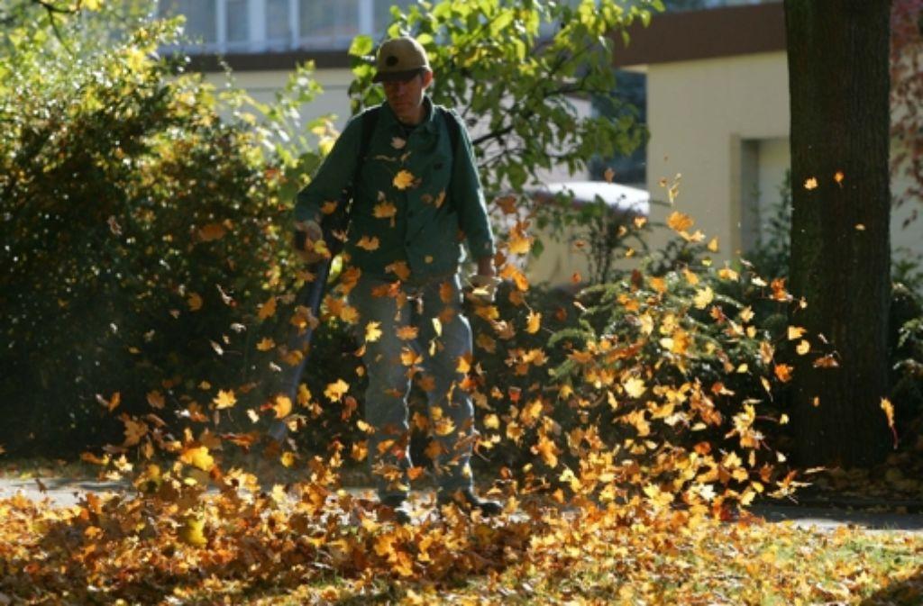 Wenn die Blätter fliegen und die Motoren dröhnen, sind kreative Lösungen gefragt. Foto: dpa