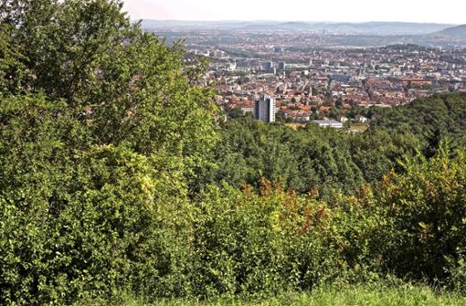 Überrascht vom Heimweh  nach Stuttgart