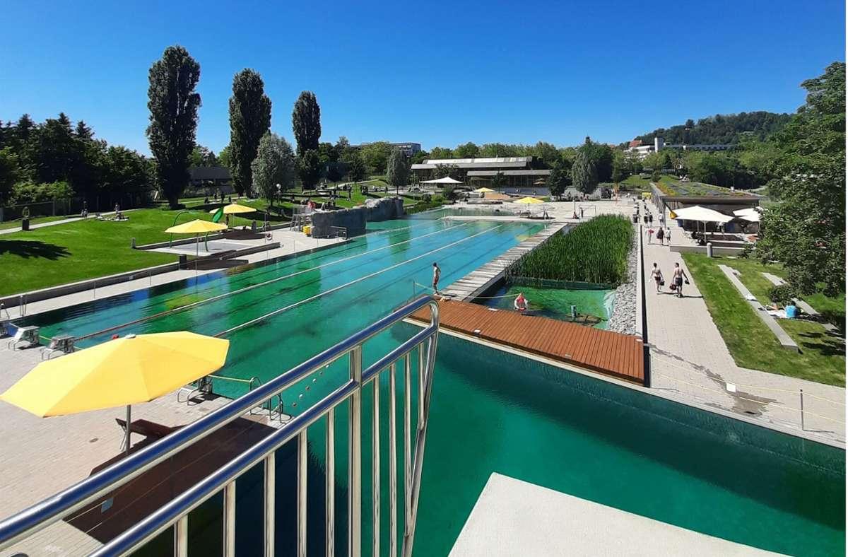 Schwimmen ist im Naturfreibad wieder möglich. Foto: Stadt Herrenberg