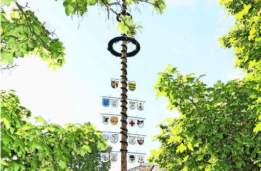 Die Maibäume werden aufgestellt