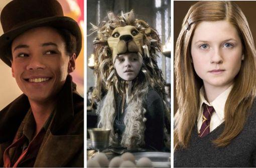 """""""Harry Potter""""-Stars zum Anfassen"""