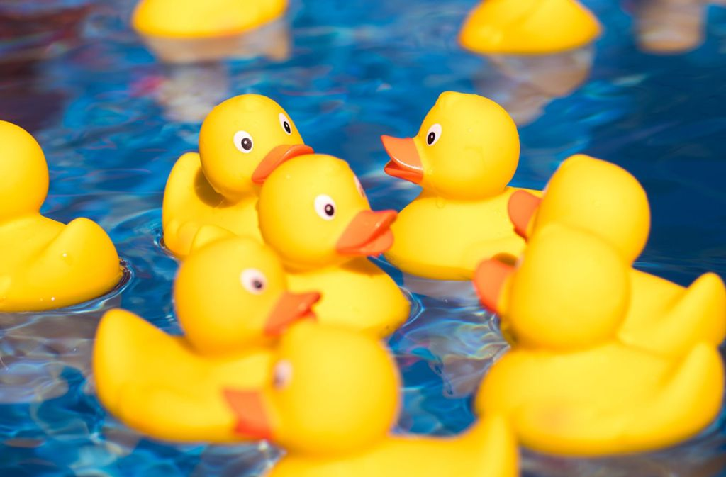 Die Gummienten schwimmen im Leuze um die Wette. Wer macht diesmal das Rennen? Foto: Martin /Stollberg