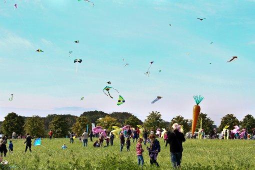 Bunte Flieger im Scharnhauser Park