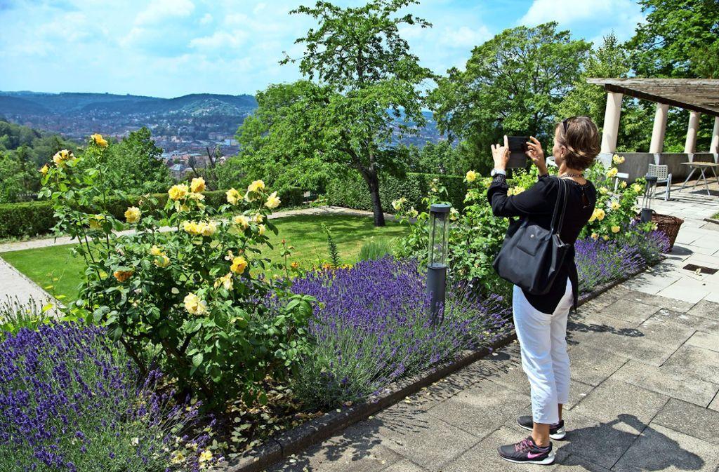Vom Garten der Clay-Villa hat man einen traumhaften Ausblick. Foto: Lg/ Oliver Willikonsky