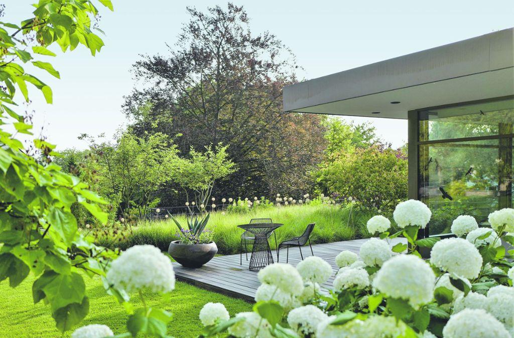 """Der Landschaftsarchitekt Klaus Klein konzentrierte sich bei der Gestaltung des klassisch eleganten Gartens auf die Farben Grün und Weiß.  Das Projekt erhielt von der Jury von """"Gärten des Jahres 2020""""  eine besondere Anerkennung. Foto: Callwey/Ute Stehlmann"""