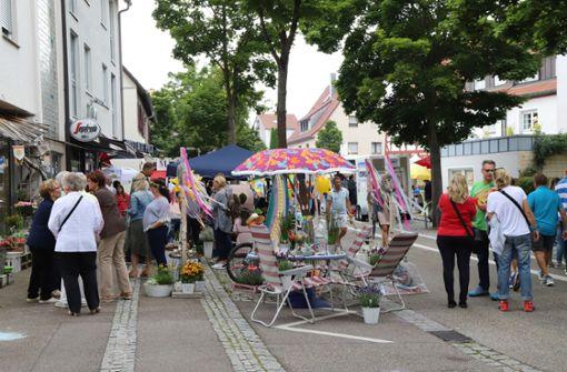 Soziale Verantwortung: Schmidener  Sommer fällt aus