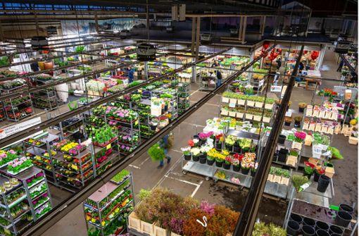 Streit am Stuttgarter Großmarkt eskaliert