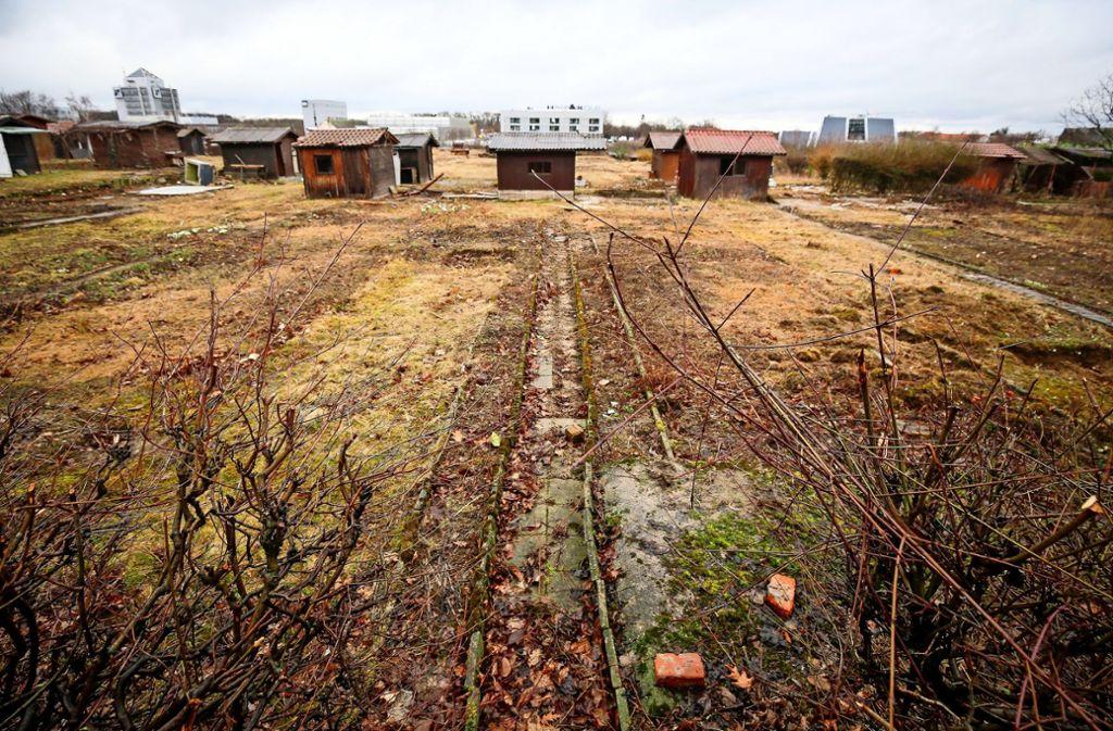 Die Lauben haben ausgedient, an ihrer Stelle werden  Firmen gebaut. Foto: factum/Archiv
