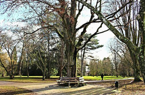Nächtlicher Radau im Park stresst Anwohner
