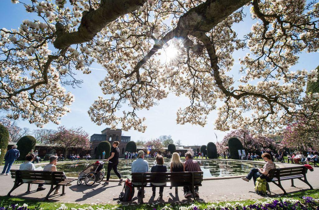 In den kommenden Tagen bleibt es sommerlich warm und sonnig in Stuttgart. Foto: dpa